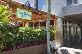 Theme Nights Announced at Cafe Habana Malibu